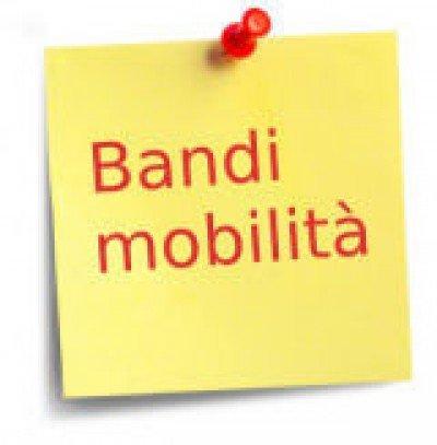 leggi-il-bando-di-mobilità